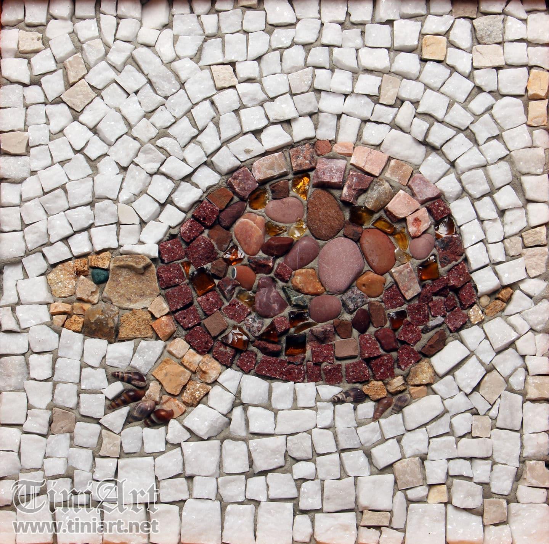 Tortoise (Full)